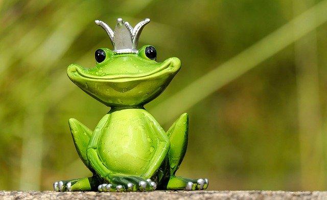 蛙亭と王様